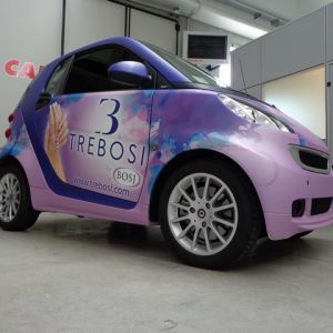 Car Wrapping Smart Trebosi